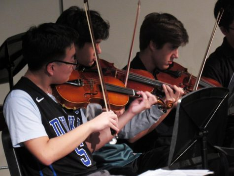 Violins in the Symphonic Orchestra perform during the Fur, Fins, & Feathers Halloween Concert (Photo by Anja O