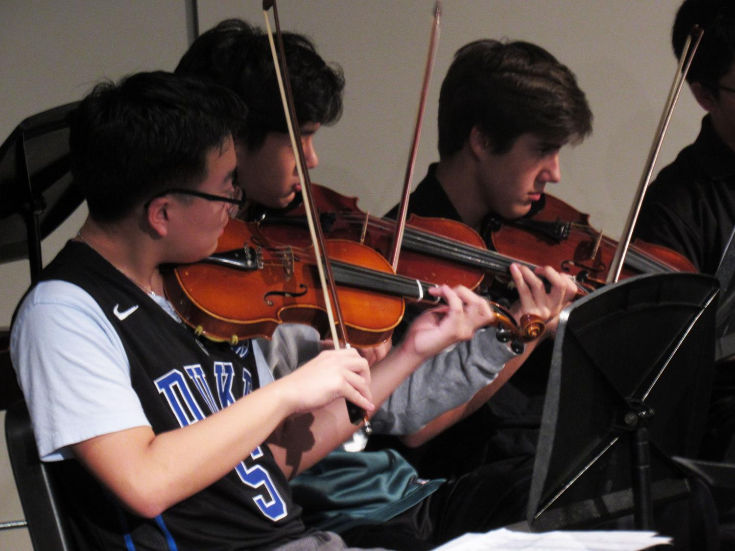 Violins in the Symphonic Orchestra perform during the Fur, Fins, & Feathers Halloween Concert (Photo by Anja O'Brien).